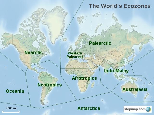 Terrestrial Ecoregions