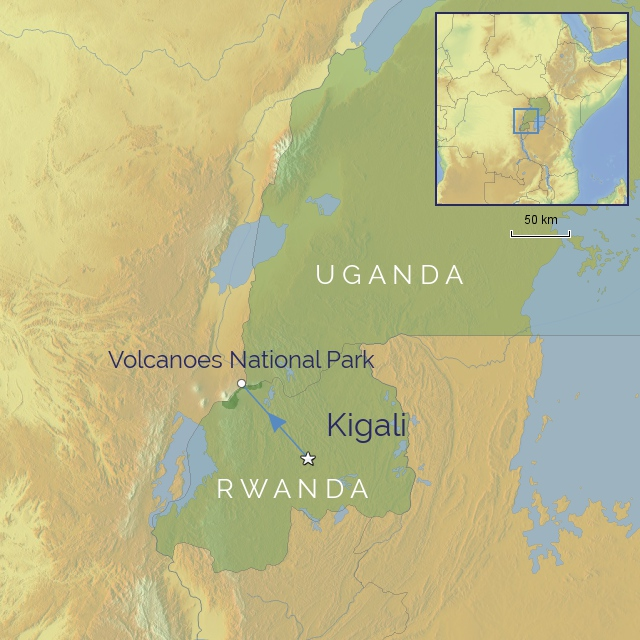 w-tour-africa-uganda-uganda-mountain-gorilla-safari